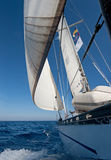 Sailing boat. In the sea Stock Image