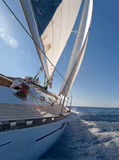 Sailing boat. In the sea Royalty Free Stock Image