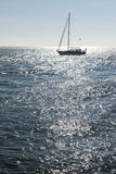 Sailing boat against the sun Stock Photo