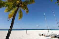 Sailing boat on the beach stock image
