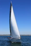 Sailing Boat During A Regatta Royalty Free Stock Images
