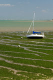 Sailing boat in the foreshore (Charente, France) Stock Photos