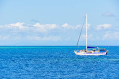 Sailing Boat in Great Barrier Reef, Australia stock images
