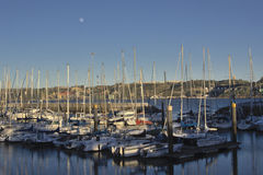 Sailing boat harbour in evening light Royalty Free Stock Photos