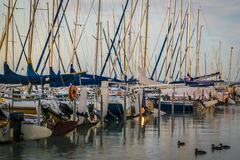 Yacht wharf on lake in summer morning. Royalty Free Stock Photography