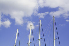 Sailing boat masts and sky. Masts of sailing boats against the blue sky Stock Photos