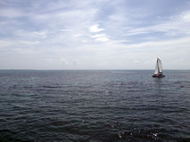 Sailing Boat in Mexican Caribbean Sea Royalty Free Stock Photo