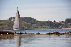 Sailing boat sailing along the banks of the river Douro Royalty Free Stock Photography