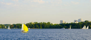 Sailing boat sailing on the river. Yellow sailing boat sailing on the river on a background of nature Royalty Free Stock Photography