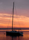 Sailing Boat Silhouette Royalty Free Stock Image