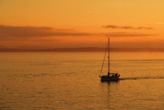 Sailing boat in Sunset. A lone sailing boat cruising in the sunset Royalty Free Stock Photo