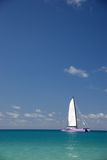 Sailing boat in the tropics royalty free stock image