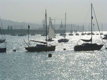 Sailing boats Stock Image