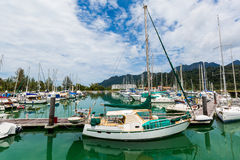 Sailing boats docked Royalty Free Stock Photo
