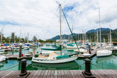 Sailing boats docked Stock Images