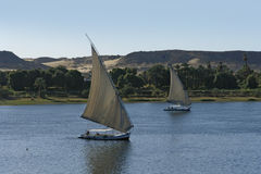 Sailing boats in Egypt Royalty Free Stock Photography