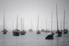 Sailing boats. In the fog Royalty Free Stock Image