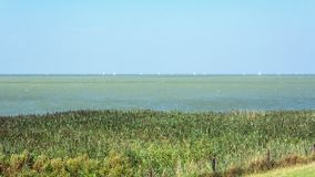 Sailing boats on the IJsselmeer seen from a Frisian dike in the. Netherlands Royalty Free Stock Photo