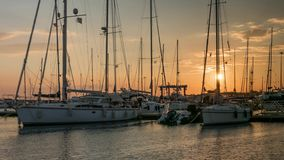 Sailing boats in marina at sanset with ducks. Time lapse stock footage