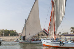 Sailing boats. On the Nile River in Luxor, Egypt Royalty Free Stock Photo