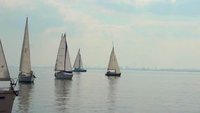Sailing boats in open sea, race, yachting, sport, traveling. Stock footage stock footage