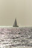 Sailing Boats Stock Photography