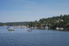 Sailing boats at Puget Sound. Sailing boats lie at Puget Sound in front of Orcas Island Royalty Free Stock Image