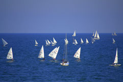 Sailing boats race Royalty Free Stock Photography