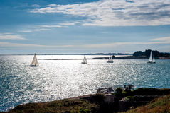 Sailing boats regatta in Brittany, Carnac, France Stock Photography