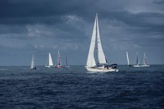 Sailing boats. Regatta, Rimini, Italy stock photography