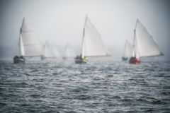 Sailing boats regatta with white sails Royalty Free Stock Photos