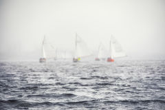 Sailing boats regatta with white sails Stock Image