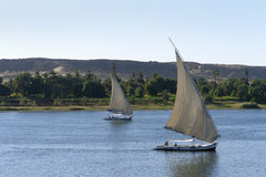 Sailing boats on River Nile. Waterside River Nile scenery including two sailing ships between Aswan and Luxor in Egypt (Africa Royalty Free Stock Image