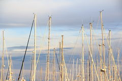 Sailing boats and stunning sunset Royalty Free Stock Photography