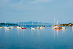 Sailing boats, Vancouver Island, Canada Stock Photography