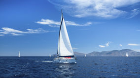 Sailing boats with white sails in the Sea. Stock Images