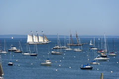 Sailing Boats and Yachts at Rockland, Maine Royalty Free Stock Images