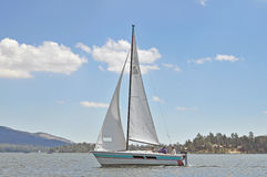 Sailing Buddys Stock Images