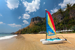 Sailing catamaran on the beach with palm trees Stock Images