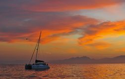 Sailing catamaran at the ocean at the coast of South Africa at sunrise. Royalty Free Stock Photo