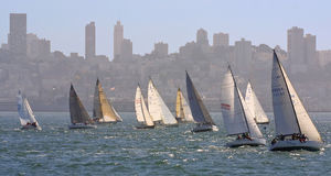 Sailing by the City. Sail race in san francisco Stock Images