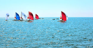 Sailing competition in Sochi Stock Images