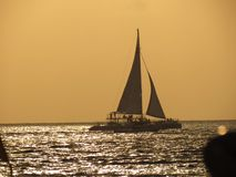 Sailing in Cozumel royalty free stock photos