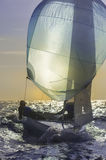 Sailing 420-5 Royalty Free Stock Image