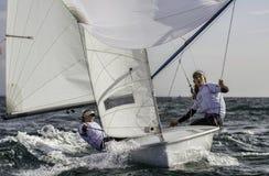 Sailing 420-20 royalty free stock photo