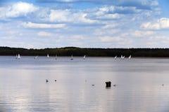 sailing Estação de mola imagens de stock royalty free