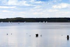 sailing Estação de mola imagem de stock