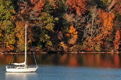 Sailing in the fall Stock Image