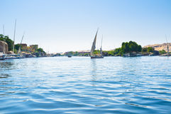 The sailing felucca Royalty Free Stock Image
