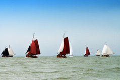Sailing Fishing Boats on the IJsselmeer, Holland Stock Photos